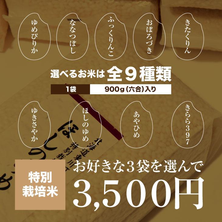 gift-shinku-t3