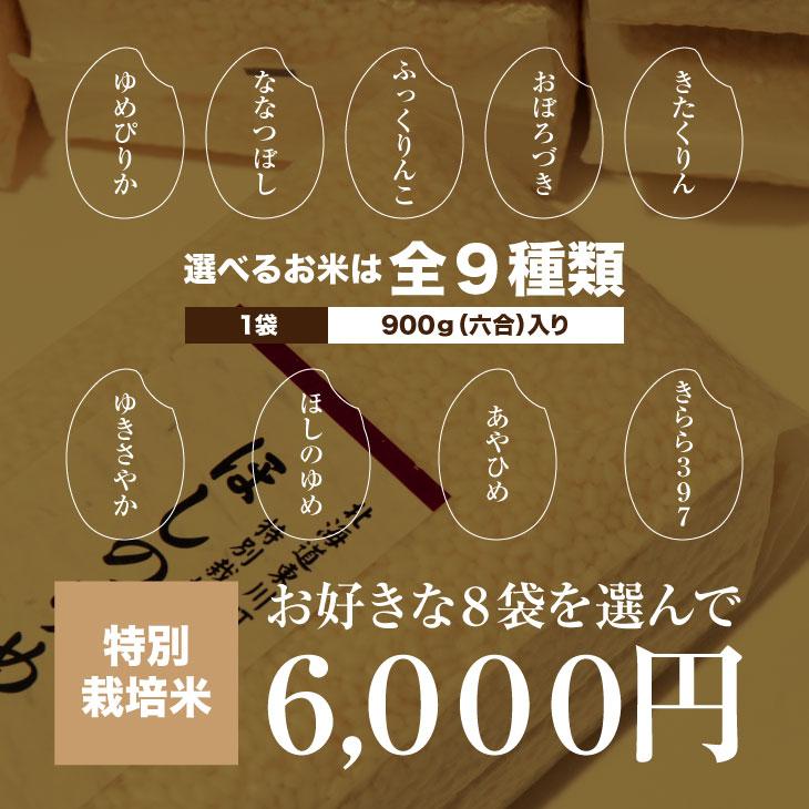 gift-shinku-t8
